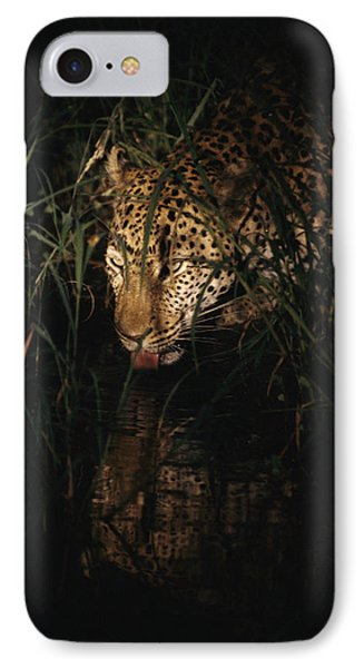 Republic Of South Africa iPhone 8 Case - Five-year-old Male Leopard Tjololo Laps by Kim Wolhuter