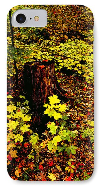Forest Floor IPhone Case
