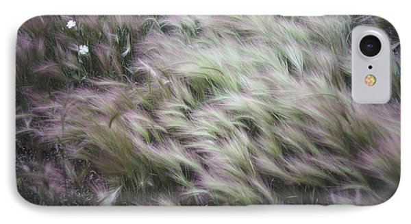 Foxtail Barley And Campion IPhone Case