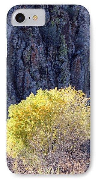 Gilded Autumn IPhone Case