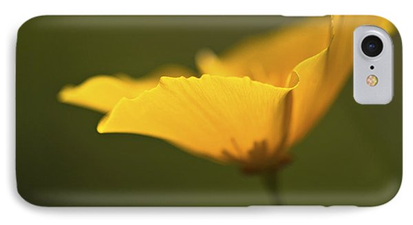 Golden Afternoon. IPhone Case