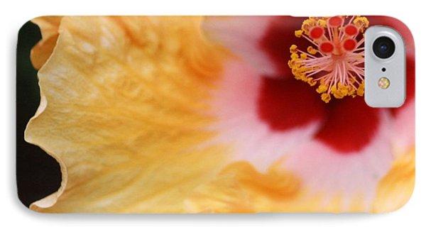 Golden And Crimson Hibiscus IPhone Case