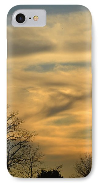 Golden Hue IPhone Case