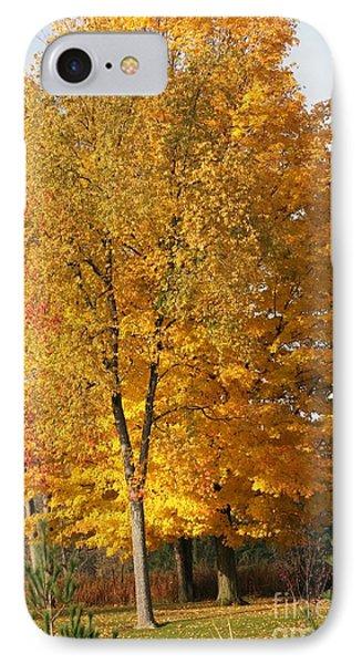 Golden Orange IPhone Case