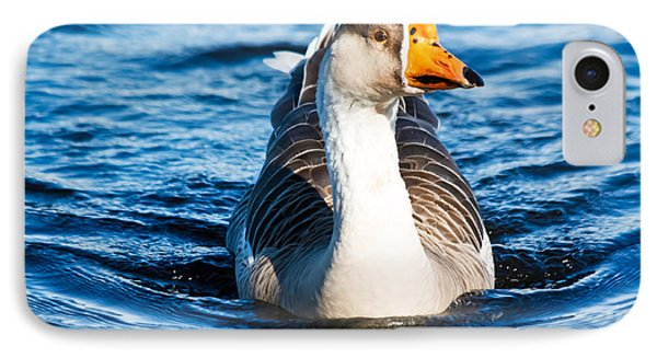 Goose Coming Into Shore  IPhone Case