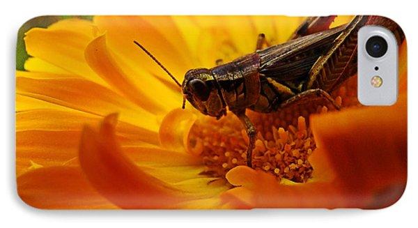 Grasshopper Luncheon IPhone Case