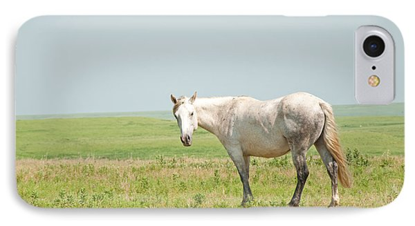 Gray On Prairie IPhone Case