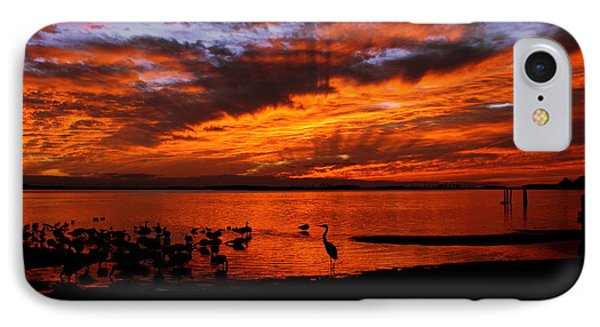 Great Heron Sunset IPhone Case