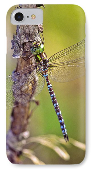 Green-striped Darner Dragonfly IPhone Case