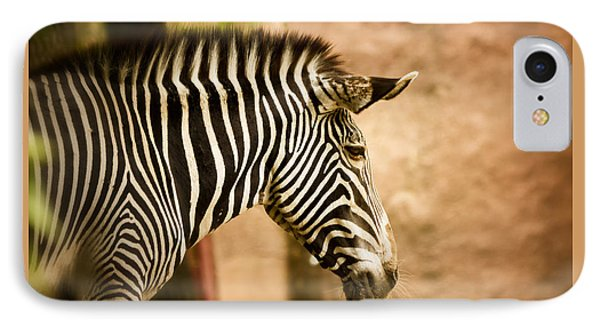 Grevys Zebra IPhone Case