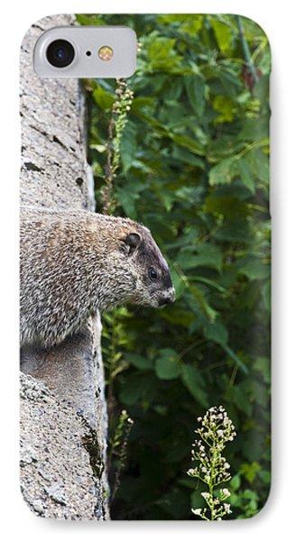 Groundhog Day IPhone Case