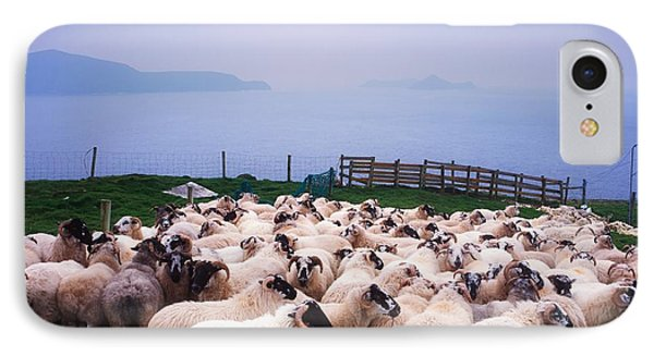 Sheep iPhone 8 Case - Herding Sheep, Inishtooskert, Blasket by The Irish Image Collection