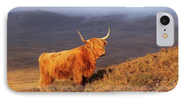 Highland Cattle Landscape IPhone Case