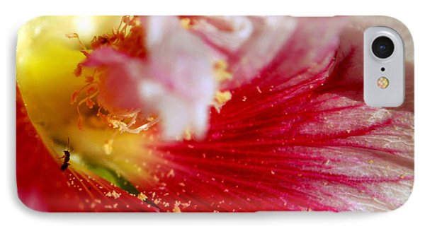 Hollyhock And The Ant IPhone Case