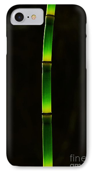 Horsetail  IPhone Case