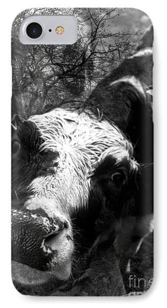 Inquisitive Zoey With Ellamay IPhone Case