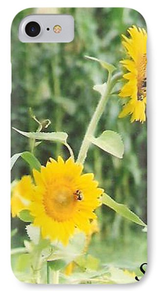 Insect On Sunflowers IPhone Case