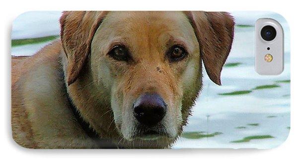 Lake Dog IPhone Case