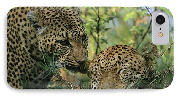 Republic Of South Africa iPhone 8 Case - Leopards Nuzzle In The Heat Of The Day by Kim Wolhuter