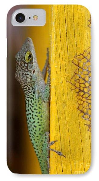 Lizard IPhone Case by Sophie Vigneault
