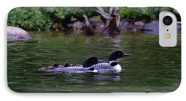 Loons With Twins 2 IPhone Case
