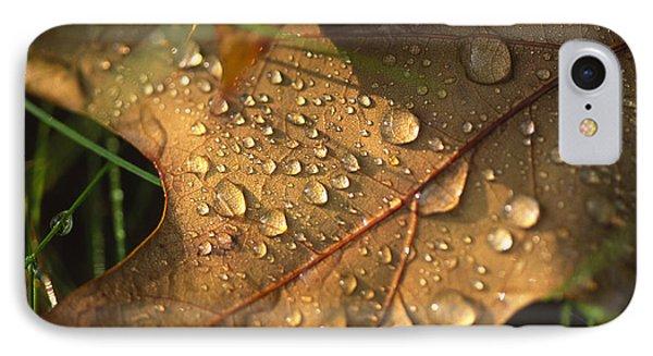Morning Dew On Oak Leaf IPhone Case