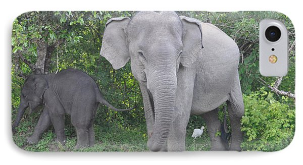 Mother Elephant And Baby IPhone Case