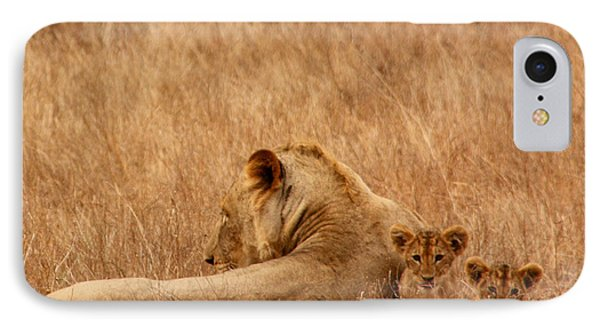 Mother Lion With Family IPhone Case