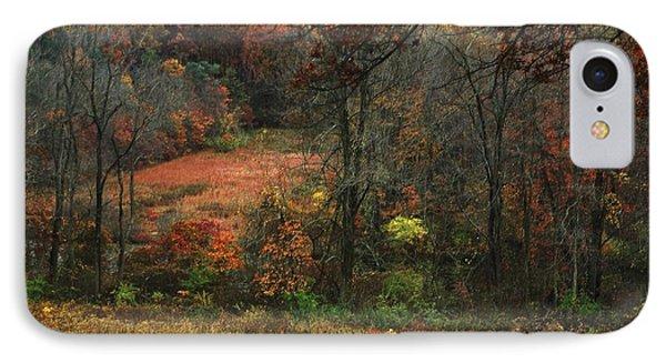 Nature's Paints IPhone Case