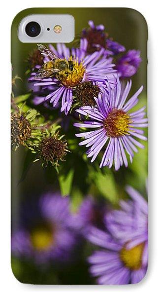 Nectar Gathering IPhone Case
