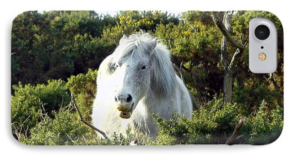 New Forest Pony IPhone Case