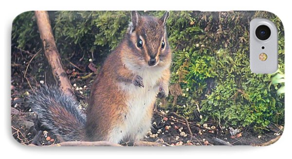 Newport Squirrel IPhone Case