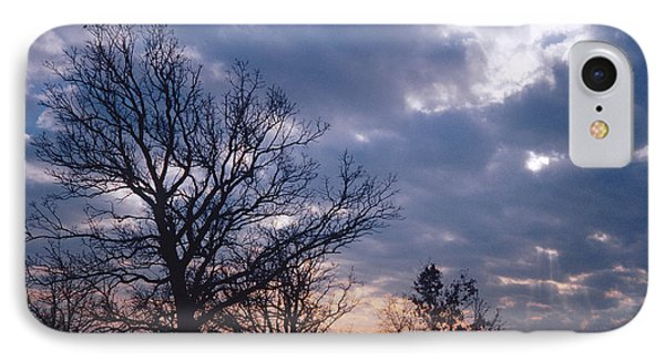 Oak In Sunset IPhone Case
