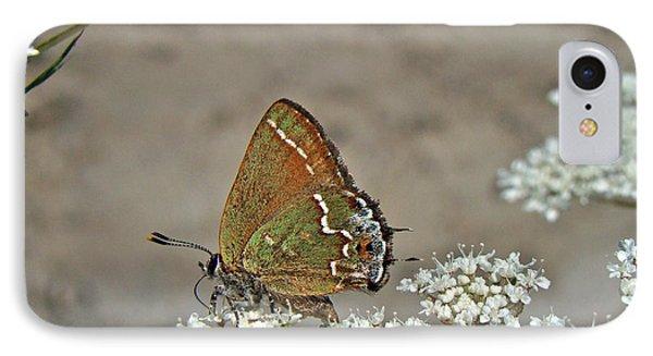 iPhone 8 Case - Olive Hairstreak Butterfly - Mitoura Grynea - Juniper Hairstreak by Mother Nature