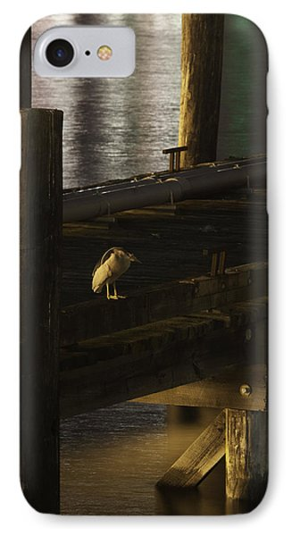 On The Dock IPhone Case