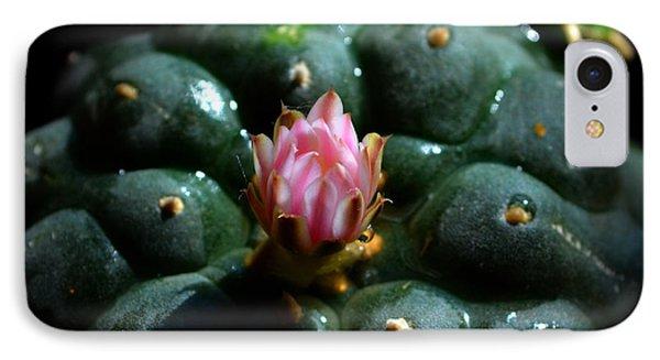 Opening Peyote Flower IPhone Case