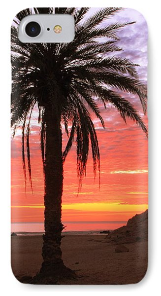 Palm Tree And Dawn Sky IPhone Case