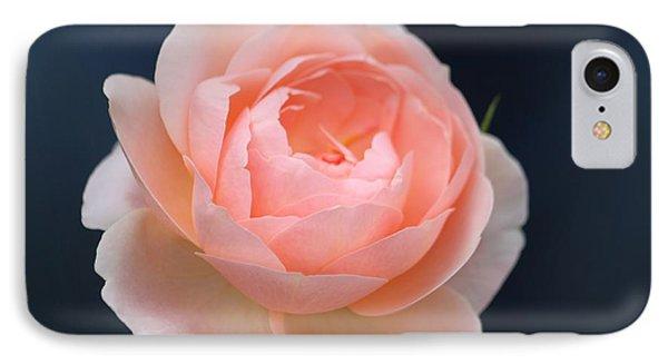 Peaches And Cream  IPhone Case