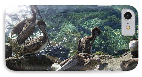 Pelicans IPhone Case
