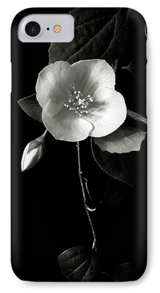 Philadelphus In Black And White IPhone Case
