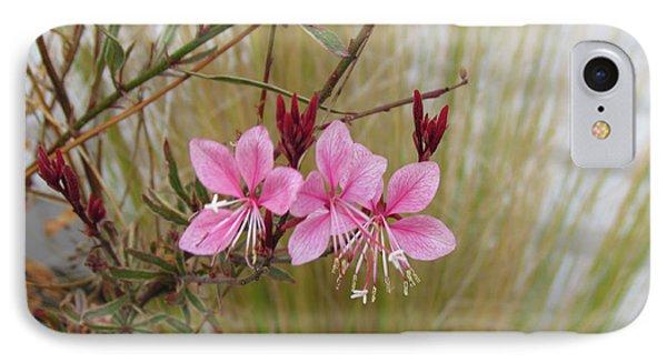 Pink Fountain - Guara IPhone Case