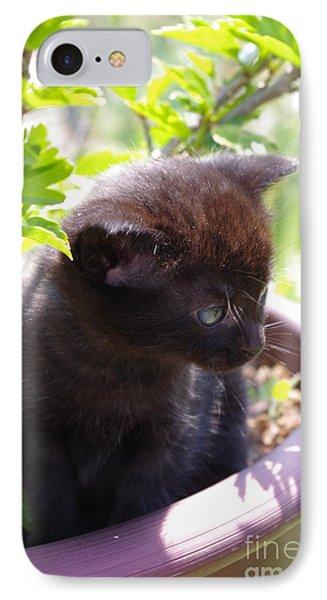 Planted Kitten IPhone Case