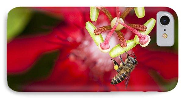 Pollen Collection Service IPhone Case