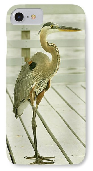 Portrait Of A Heron IPhone Case