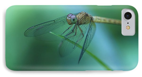 Resting Dragonfly IPhone Case