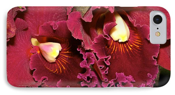 Rich Burgundy Orchids IPhone Case