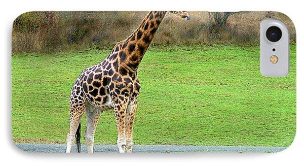 Safari Giraffe IPhone Case