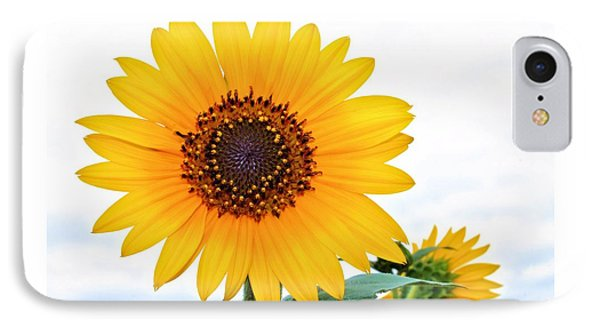 Sassy Sunflower IPhone Case