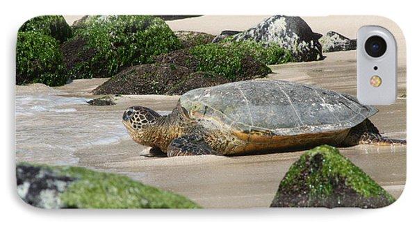 Sea Turtle 1 IPhone Case
