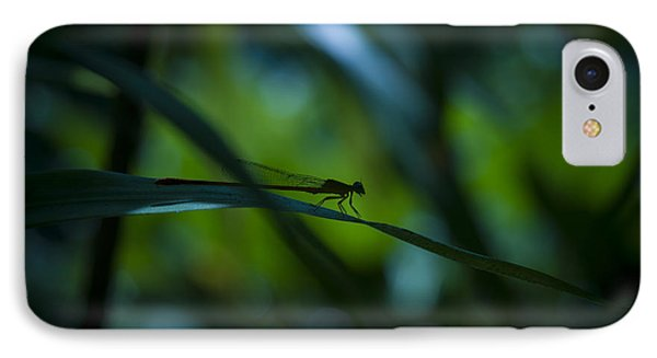 Silhouette Of A Damselfly IPhone Case